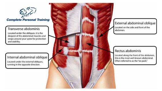 Best Core Exercises