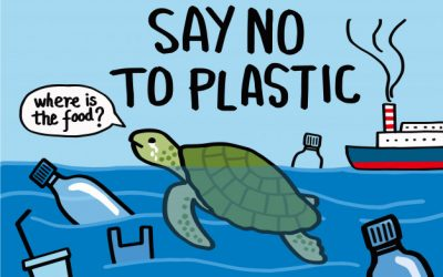 16 Easy Ways to Use Less Plastic